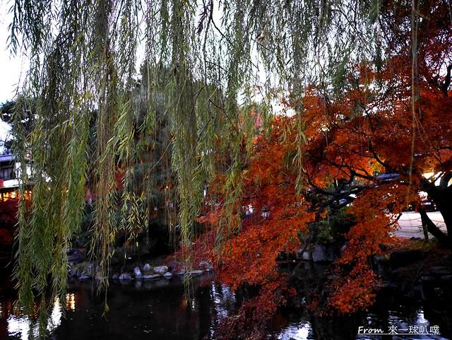 八阪神社42