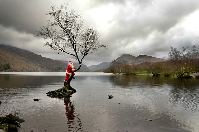 Famous lone tree....lonely Santa!