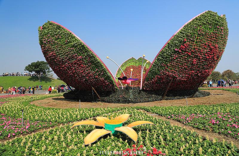 2017臺中國際花毯節17