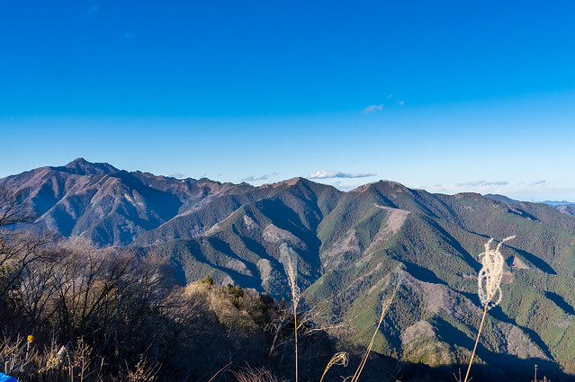 アンテナピークより大岳山