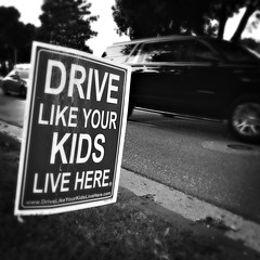 365_Day 8 - Drive Like Your Kids Live Here