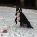 Julie-Schnee 10-12-17-5.jpg