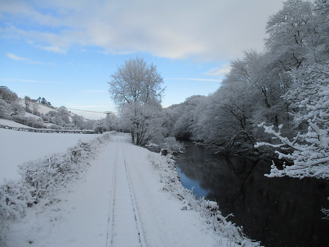 River Banwy In Winter
