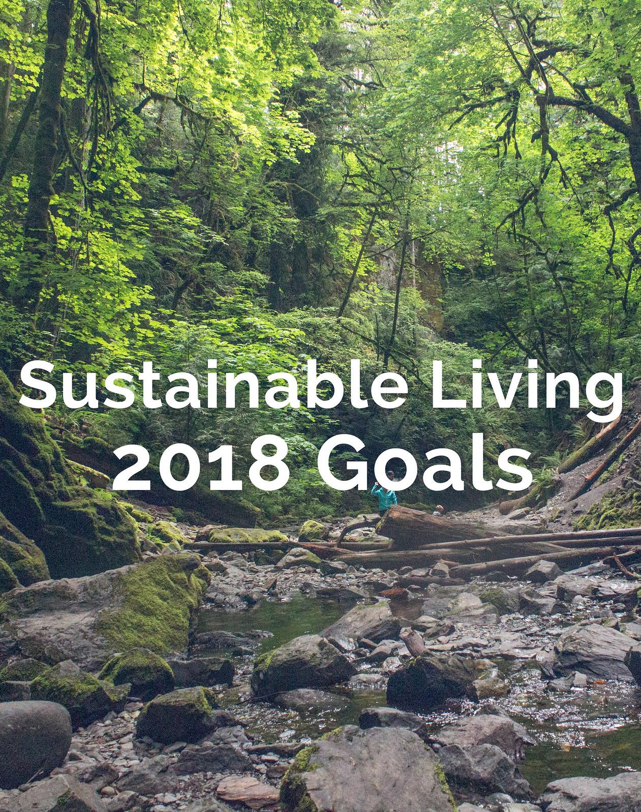 Sustainable living 2018 goals