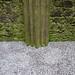 <p><a href=&quot;http://www.flickr.com/people/missmareck/&quot;>mizmareck</a> posted a photo:</p>&#xA;&#xA;<p><a href=&quot;http://www.flickr.com/photos/missmareck/27782133569/&quot; title=&quot;Far Xmas&quot;><img src=&quot;http://farm5.staticflickr.com/4644/27782133569_af735f2a6d_m.jpg&quot; width=&quot;240&quot; height=&quot;160&quot; alt=&quot;Far Xmas&quot; /></a></p>&#xA;&#xA;<p>Far Xmas in Ireland 2016</p>