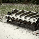 Snowy bench at Haslam Park