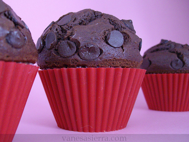 MuffinsChocolateStarbucks13