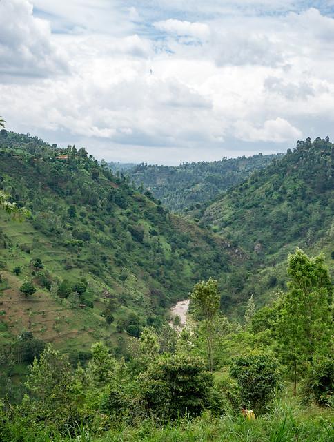 Stunning views all around the hilly Nyeri region