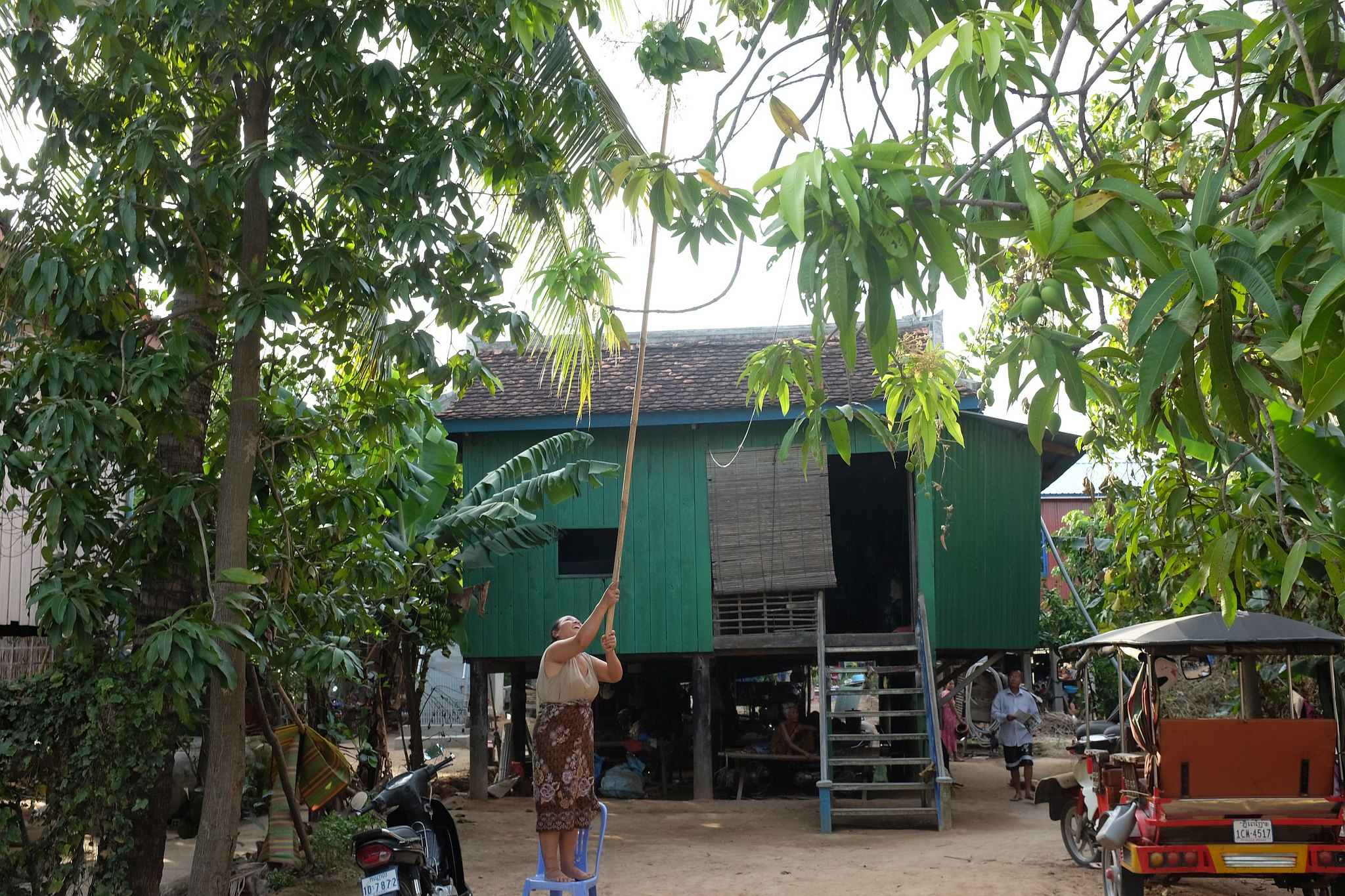 Cambodia265