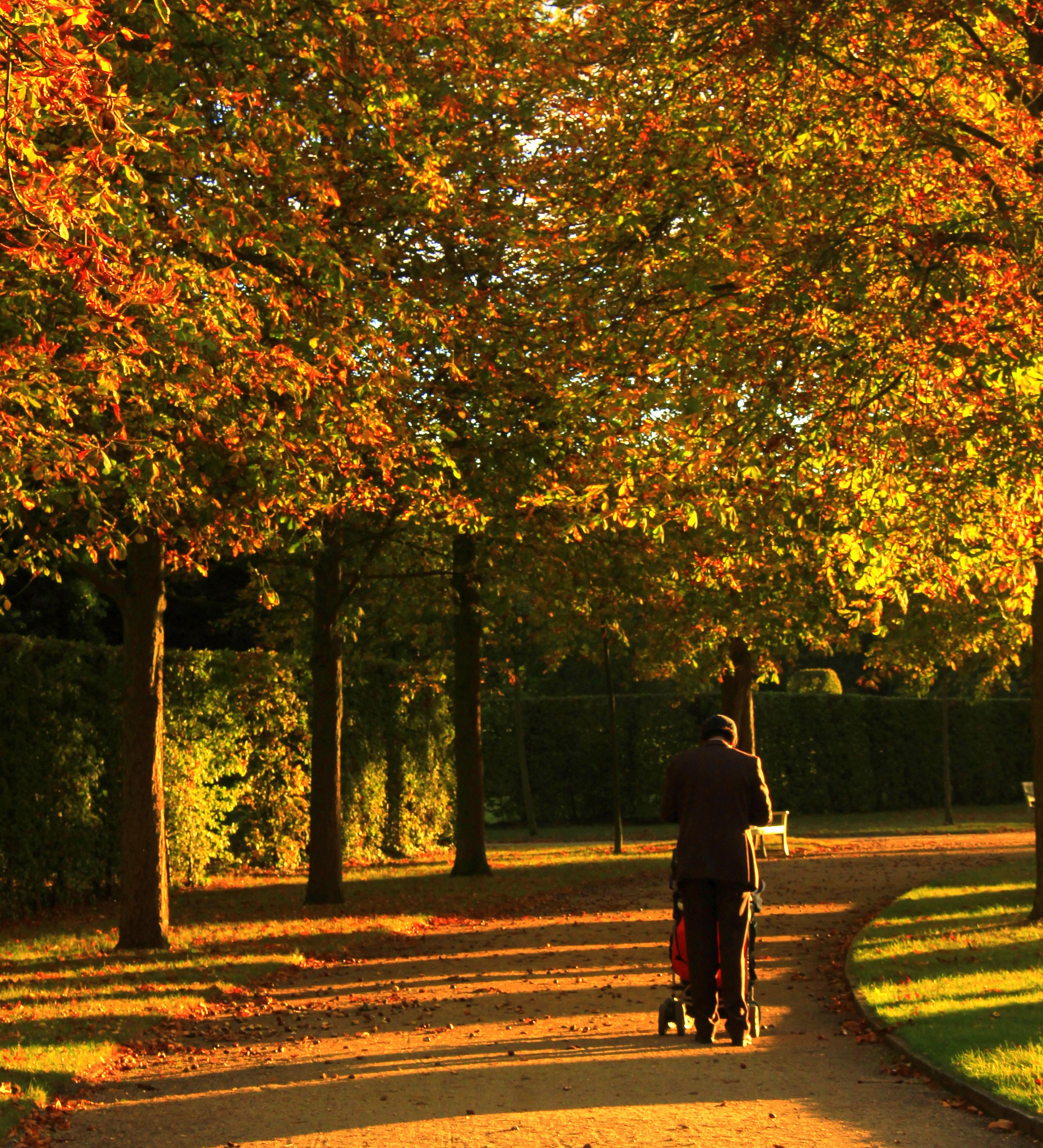 Autumn is beautiful in Potsdam