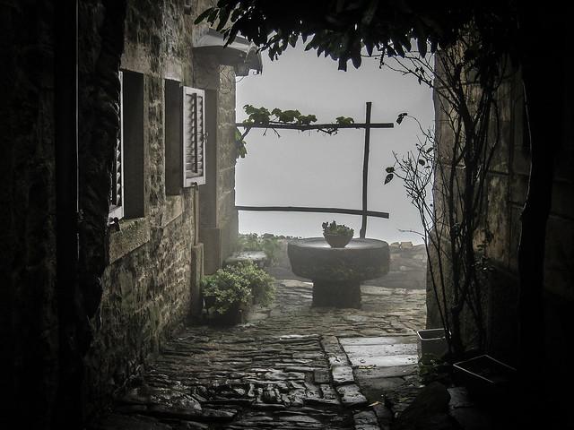 Wet and foggy / *Explored, Canon DIGITAL IXUS 750