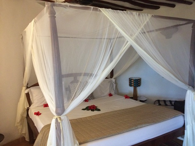 Bed with mosquito nets