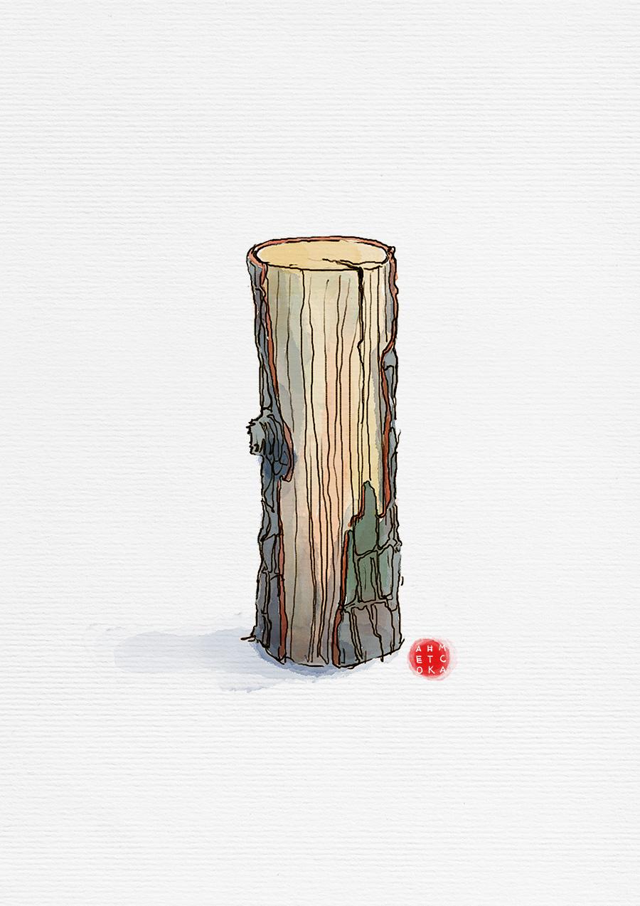 odun_wood