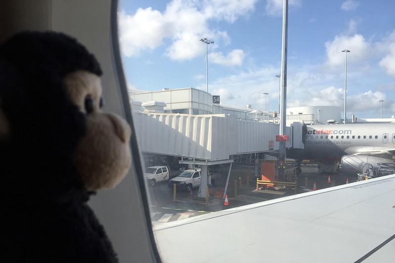 Monkey flies Jetstar