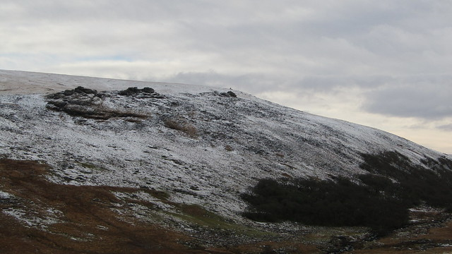 Black Tor (Okehampton) and Black-a-tor Copse