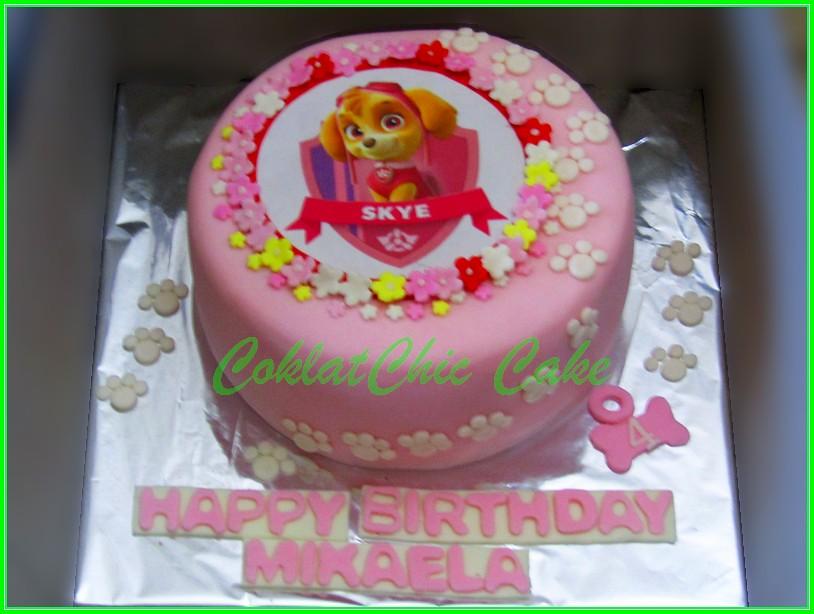 Cake Paw Patrol MIKAELA 18 cm