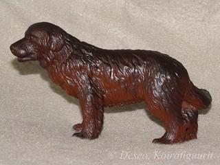 Newfoundlandin koira, ruskea_wm