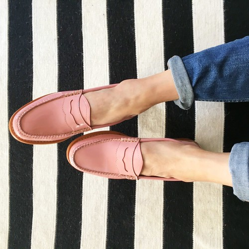 Clarks Shoes Aniaml Respect