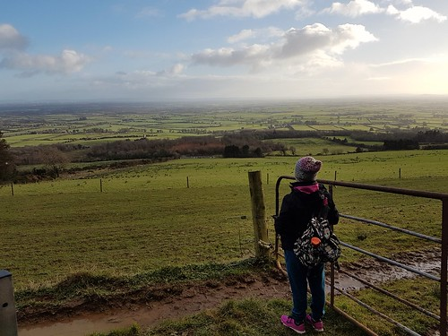 Looking out over Tipperary