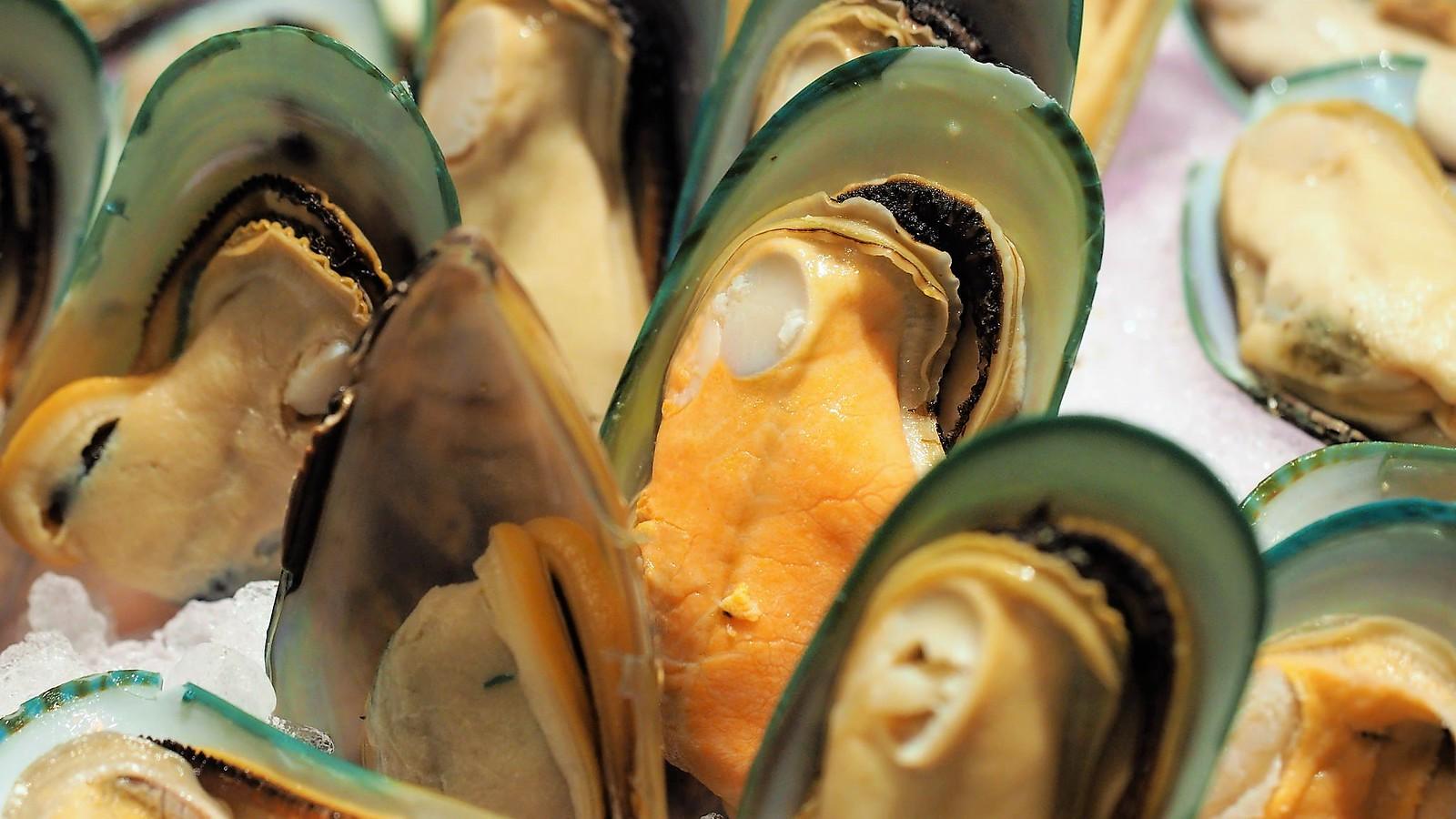 Mussels on ice at Feast @ Sheraton Petaling Jaya