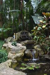 St Petersburg, FL - Sunken Gardens