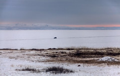 Ice Road on the Selenge River
