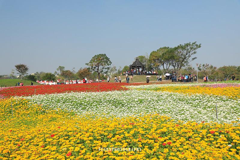 2017臺中國際花毯節39