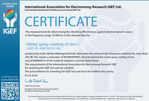 IGEF-Zertifikat-AME-EN-2