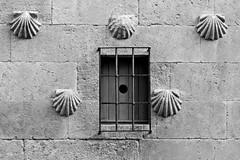 Salamanca | 2017