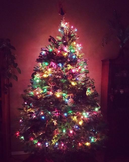 Happy Christmas Eve. ✨🎄✨