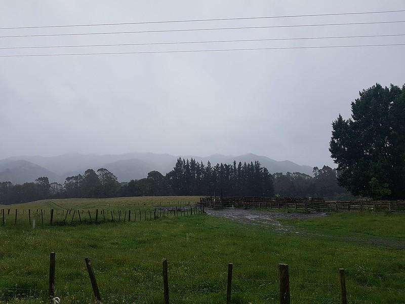 NZ Holiday day 8 Rotorua to Te Harato