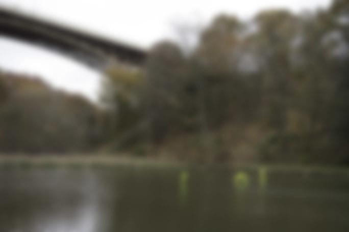 DSC08772_blur