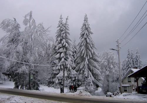 Schnee in Frauenwald