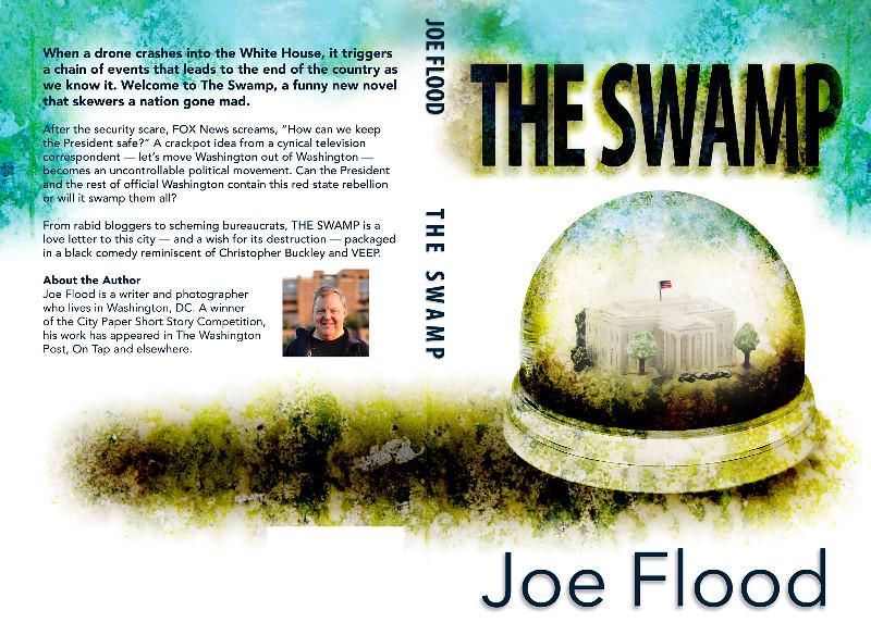 The Swamp by Joe Flood