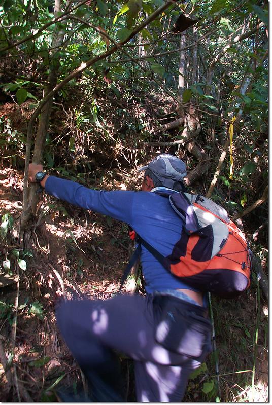 攀登朝日山主峰 3