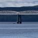 Beautiful Railway Bridge of the Silv'ry Tay!