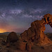 The Elephant Walks at Night by Wayne Pinkston