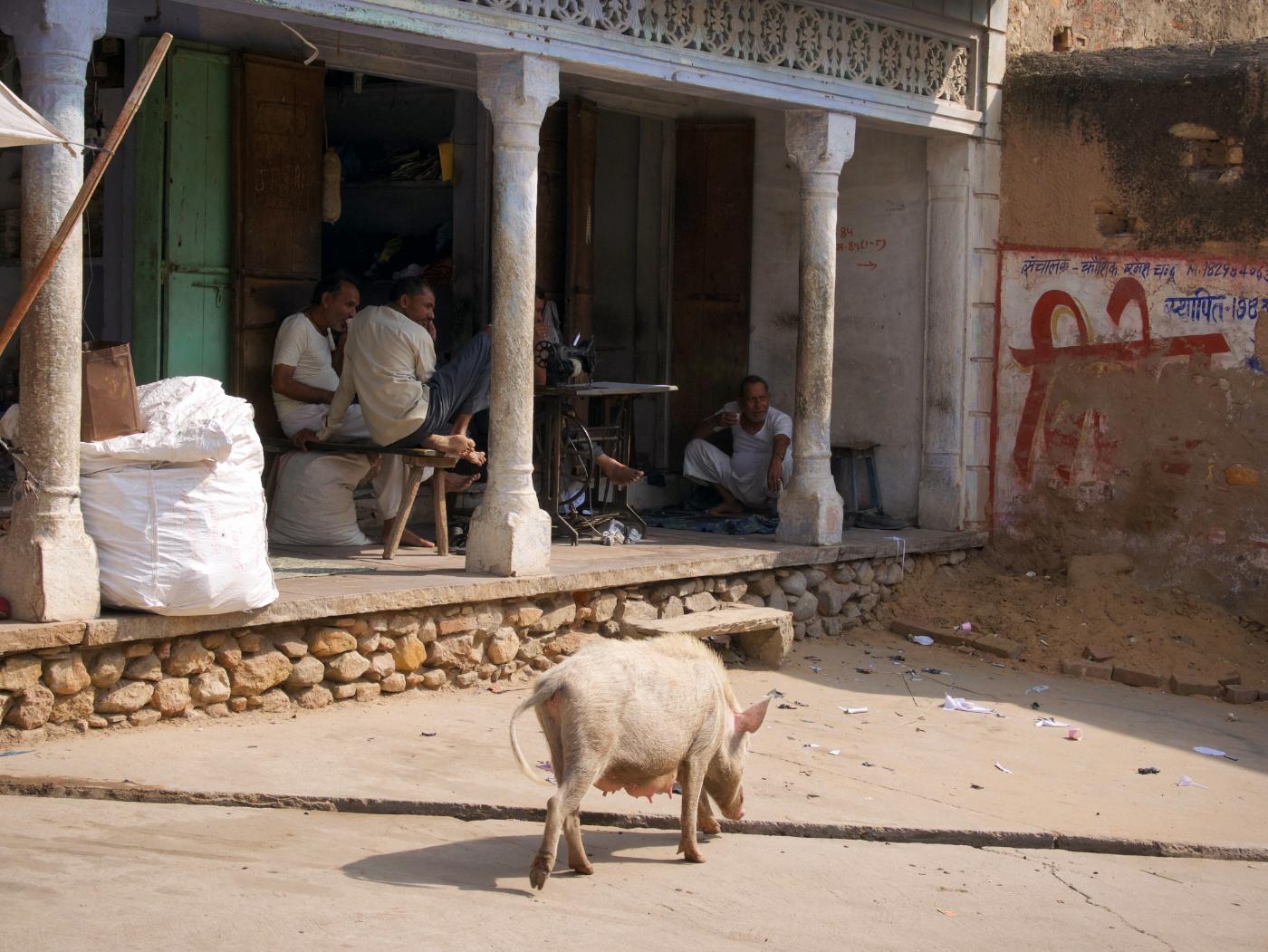 220-India-Khandela