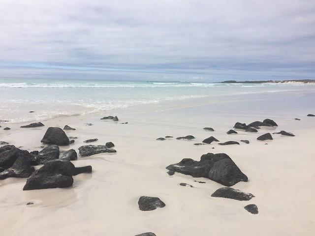 White sand, black rocks and blue water at Tortuga Bay, Galapagos Islands