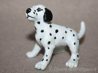 Dalmatian pentu, vanha_wm