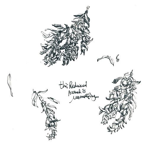 Sketchbook #110: Treasures.