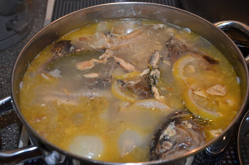 fish stock Jan 18