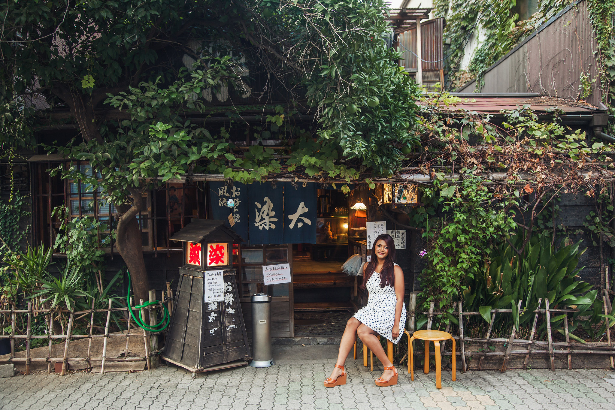 Tokyo Japan travel