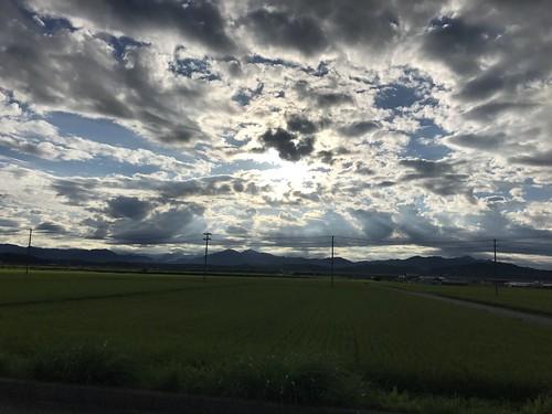 新潟は田んぼばっかで特に感想なし