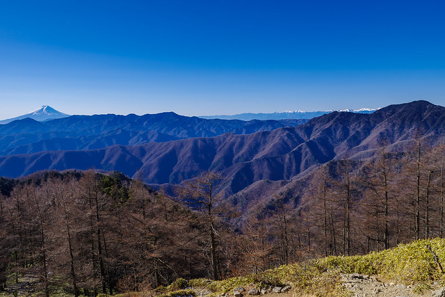 富士山・大菩薩連嶺・南アルプス・飛龍山@小雲取山直下