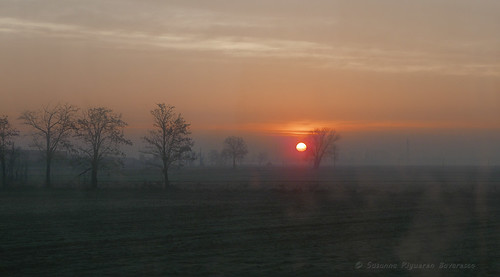 Traveling in sunrise (by train)