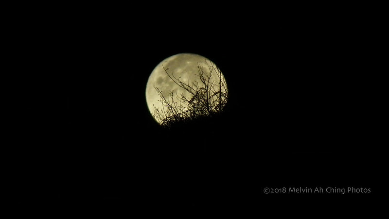 First Full Moon of 2018