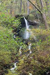 Cascade de Brisecou - Photo of Antully