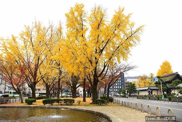 東本願寺11