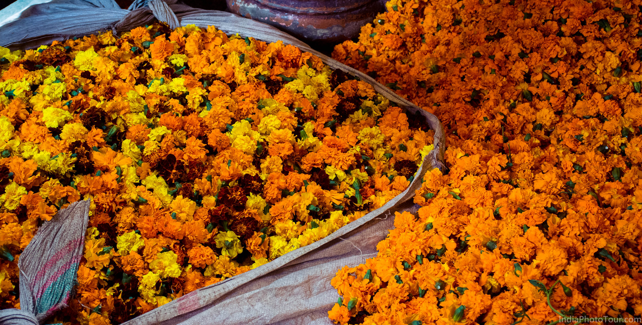 Marigold flowers in the flower market
